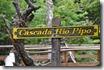 Parc National Ushuaia (36)