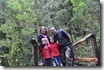 Bosque Encantado (35)