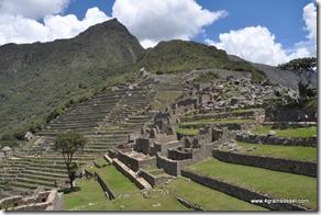 Machu Picchu (68)