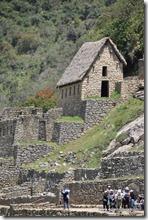 Machu Picchu (71)