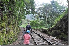 Voie ferrée - Machu Picchu (7)