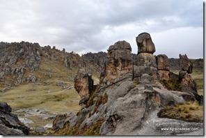 Bosque de Piedras (12)