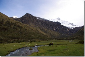 Lagunas LLanguanuco (10)