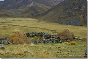 Route Huaraz -Puya Raimondi (19)