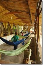 Amazonie - Rio Napo (12)