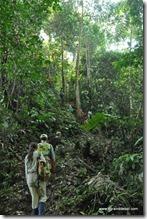 Amazonie - Rio Napo (39)