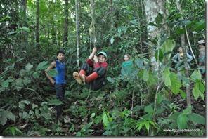 Amazonie - Rio Napo (42)