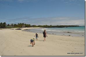 Galapagos - Isla Isabella - Malecon (6)