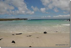 Galapagos - Isla San Cristobal - Puerto Chino (3)