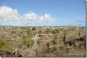 Galapagos - Isla Santa Cruz (3)