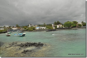 Galapagos - Isla Santa Cruz - Puerto Ayora (2)