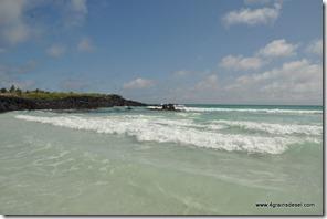 Galapagos - Isla Santa Cruz - Tortuga Bay (11)