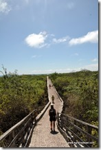Galapagos - Isla Santa Cruz - Tortuga Bay (1)