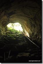 Galapagos - Isla Santa Cruz - Tunnel de lave (1)