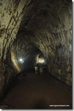 Galapagos - Isla Santa Cruz - Tunnel de lave (2)