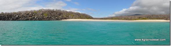 Galapagos - Isla los Lobos (1)1