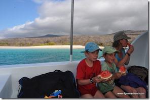 Galapagos - Isla los Lobos (26)