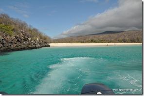 Galapagos - Isla los Lobos (28)