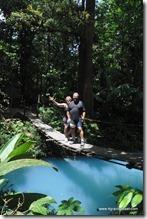 Costa Rica - PN Tenorio (46)
