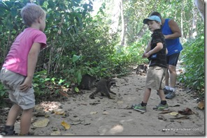 Costa Rica - PN de Cahuita (4)