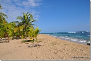 Costa Rica - Punta Uva (13)