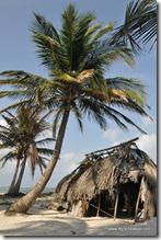 Panama - Archipel San Blas (102)