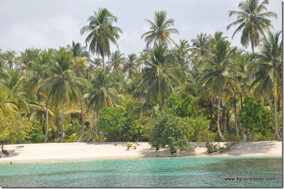 Panama - Archipel San Blas (77)