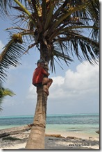 Panama - Archipel San Blas (97)
