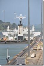 Panama - Ecluses de Gatun (14)