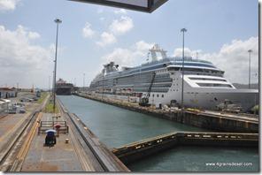 Panama - Ecluses de Gatun (29)