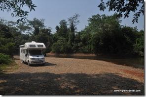 Belize - Rivière Sibun (13)
