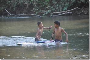 Belize - Rivière Sibun (9)