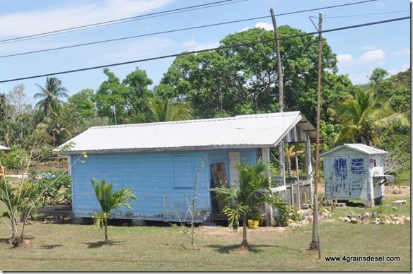 Belize - Route Belmopan (9)