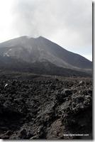 Guatemala - Volcan Pacaya (10)