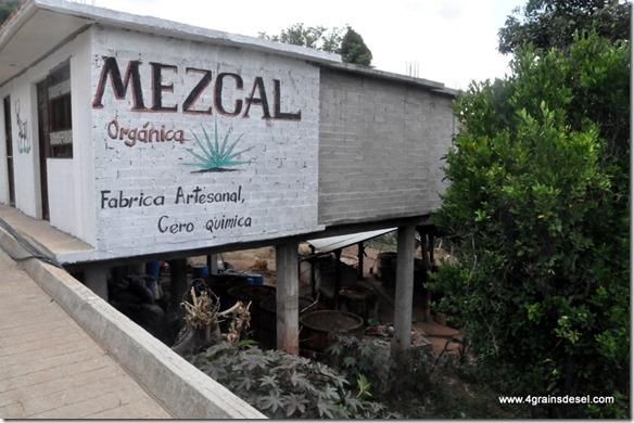 Mexique - Hierve El Agua (49)