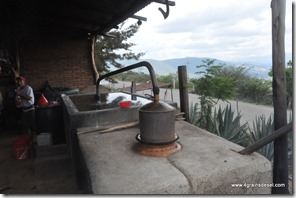 Mexique - Hierve El Agua (56)