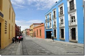 Mexique - Oaxaca (3)