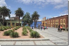 Mexique - Oaxaca (9)