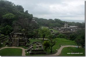 Mexique - Ruines de Palenque (39)