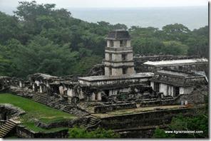 Mexique - Ruines de Palenque (44)