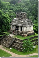 Mexique - Ruines de Palenque (45)