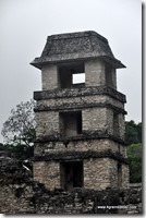Mexique - Ruines de Palenque (7)