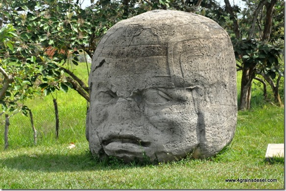 Mexique - Site Olmeque La Venta (5)