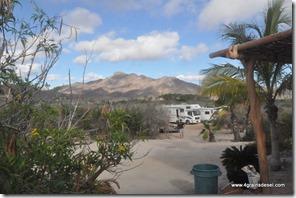 Mexique - Baja California - Cabo Pulmo (22)