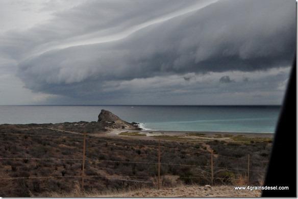 Mexique - Baja California - Cabo Pulmo (2)