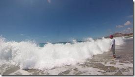 Mexique - Baja California - Los Frailes  (101)