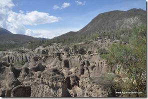 Mexique - Reserva de Tehuacan Cuicatlan (23)