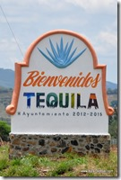Mexique - Route de la Tequila (5)