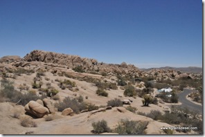 Usa - Californie - Joshua Tree NP (24)