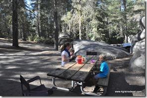 Usa - Californie - Yosemite NP (18)